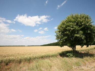 Agriculteurs bulgares ont fait des propositions concrètes pour la nouvelle PAC (vidéo)